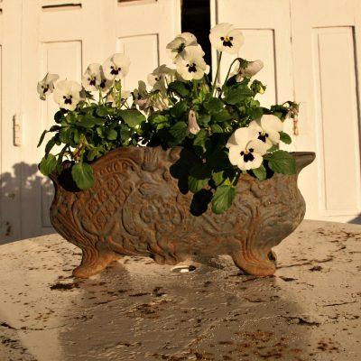 W006Y- oude Franse gietijzeren jardiniere