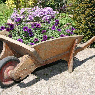 T001A- oude houten kruiwagen